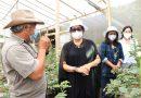 Ny Putri Koster Ajak Florist Bali Gunakan Bunga Hasil Pertiwi Bali